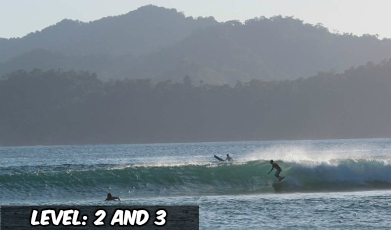 Beginner Surf Camp Indonesia.