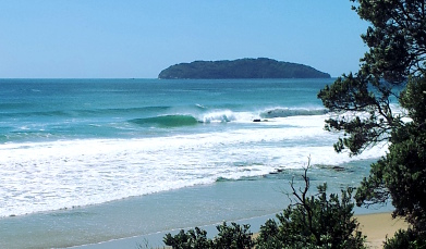 Get advanced surf coaching in good waves.